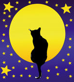 The Cat, the full moon and a starry sky — Stock Vector