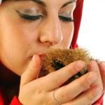 Chestnuts of Christmas — Zdjęcie stockowe #6740921