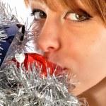 endlich hat die Weihnachtszeit — Stockfoto #6743502