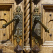 Detail of Old Wooden Door - Stock fotografie