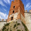 Soave Castle Keep - X Century - Verona Italy - Foto de Stock  
