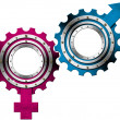 Male and Female Symbols - Metal Gears — Stock Photo #25059369
