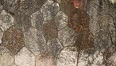 石头墙背景 — 图库照片