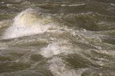 Brown River Rapids — Stock Photo