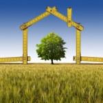 casa ecológica na zona rural — Foto Stock