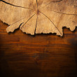 Section of Tree Trunk  - Background — Foto de Stock