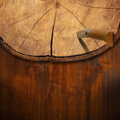 Section of Tree Trunk - Background — Stock Photo