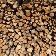 Pile of Chopped Firewood — Foto de Stock