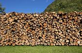 Mucchio di legna da ardere tritata sul cielo blu — Foto Stock