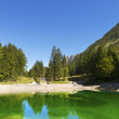 Lago del Predil - Friuli Italy — Stock Photo #32439365