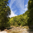 Slizza (Gailitz) River Canyon in Tarvisio Italy — Stock Photo