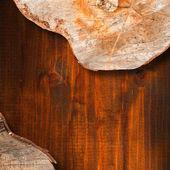 Sezione di tronco d'albero - sfondo — Foto Stock