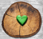 Green Heart on Section of Tree Trunk — Stock Photo
