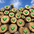 Wooden Logs with Green Hearts — Stock Photo