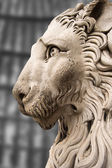 Lion Statue Cathedral St. Lawrence Genova — Stock Photo