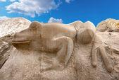 камень лягушка - каорле - венеция италия — Стоковое фото