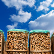 Pile of Chopped Firewood on Blue Sky — Stock Photo #46839121