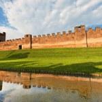 Castelfranco Veneto - Treviso Italy — Stock Photo #47445119