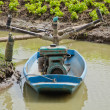 Boat used for feeding water to lettuces farm — Stock Photo