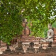 Royalty-Free Stock Photo: The big ancient buddha statue in ruined old temple at Ayutthaya