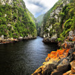 Storms River - Tsitsikamma National Park — Stock Photo