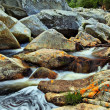 Stock Photo: River Rocks - Wilderness