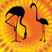 Flamingo on orange background vector illustration — Vetorial Stock