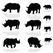 Stock Vector: Rhinoceros wils animal black silhouette