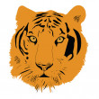 Stock Vector: Tiger head vector illustration
