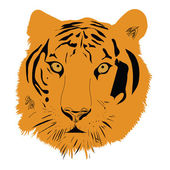 Tiger head vector illustration — Stock Vector