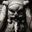 Fountain face — Foto de Stock