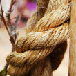 Rope in closeup — Stock Photo
