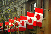 Canada House — Stock Photo