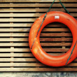 Life buoy — Stock Photo #25618319