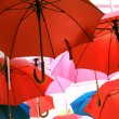 Umbrellas — Stock Photo #32005557