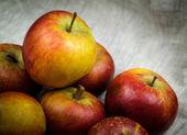 Apples on canvas — Stock Photo