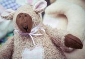 Terry the Lamb — Stock Photo
