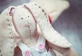 Soft bunny — Stock Photo