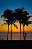 A Tropical sunset — Stock Photo