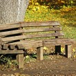 Bench in autumn park — Stock Photo #12409584