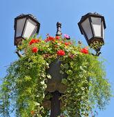 花壇とヴィンテージの街路灯 — ストック写真