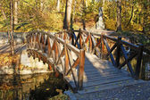 Park bridge at autumn — Stock Photo