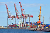 Port cargo crane — Stock Photo