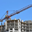 Crane and construction site — Stock Photo #13698242