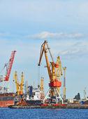 Navio graneleiro sob o guindaste portuário — Fotografia Stock
