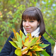 Young woman with fall leaves — Stock Photo