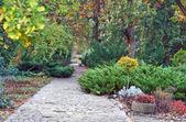 Camino del parque en otoño — Foto de Stock