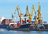 массовая грузовой корабль под портовый кран — Стоковое фото