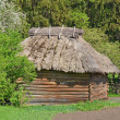 Ancient wicker barn with a straw roof - Foto Stock