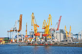 Grue de chargement de port — Photo